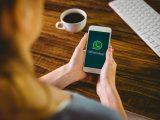 WhatsApp mensagens dados termos